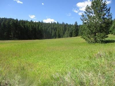 40 Emils Crest Road, Lakeside, MT 59922