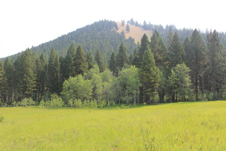 Nhn Colorado Gulch Drive, Helena, MT 59601