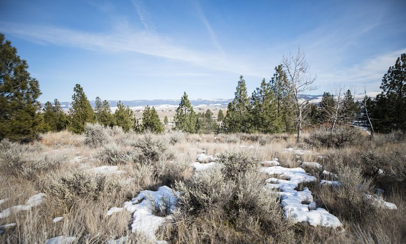 Lot 17a Illinois Bench Road, Stevensville, MT 59870