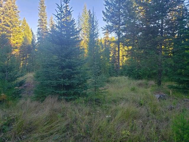 Nhn Koocanusa Trail, Fortine, MT 59918