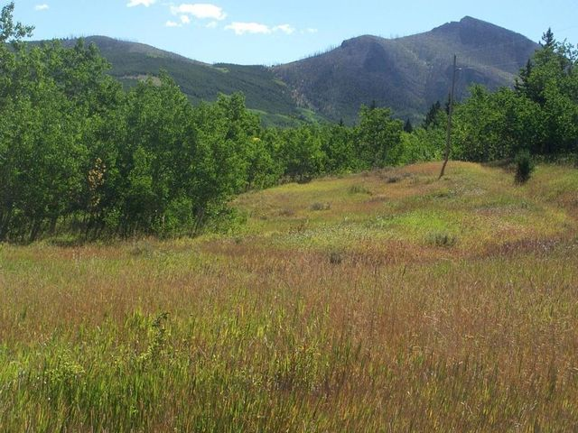 Tbd Lot 8 Table Mountain Road, Augusta, MT 59410