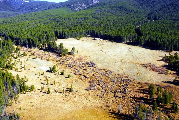 Aerial of large meadow surrounded by USFS with Willow Creek meandering through meadow.