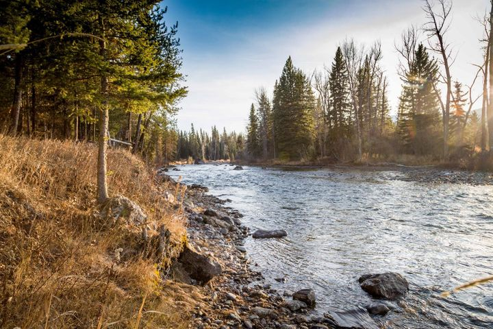 Nhn Fatty Creek, Swan Lake, MT 59911