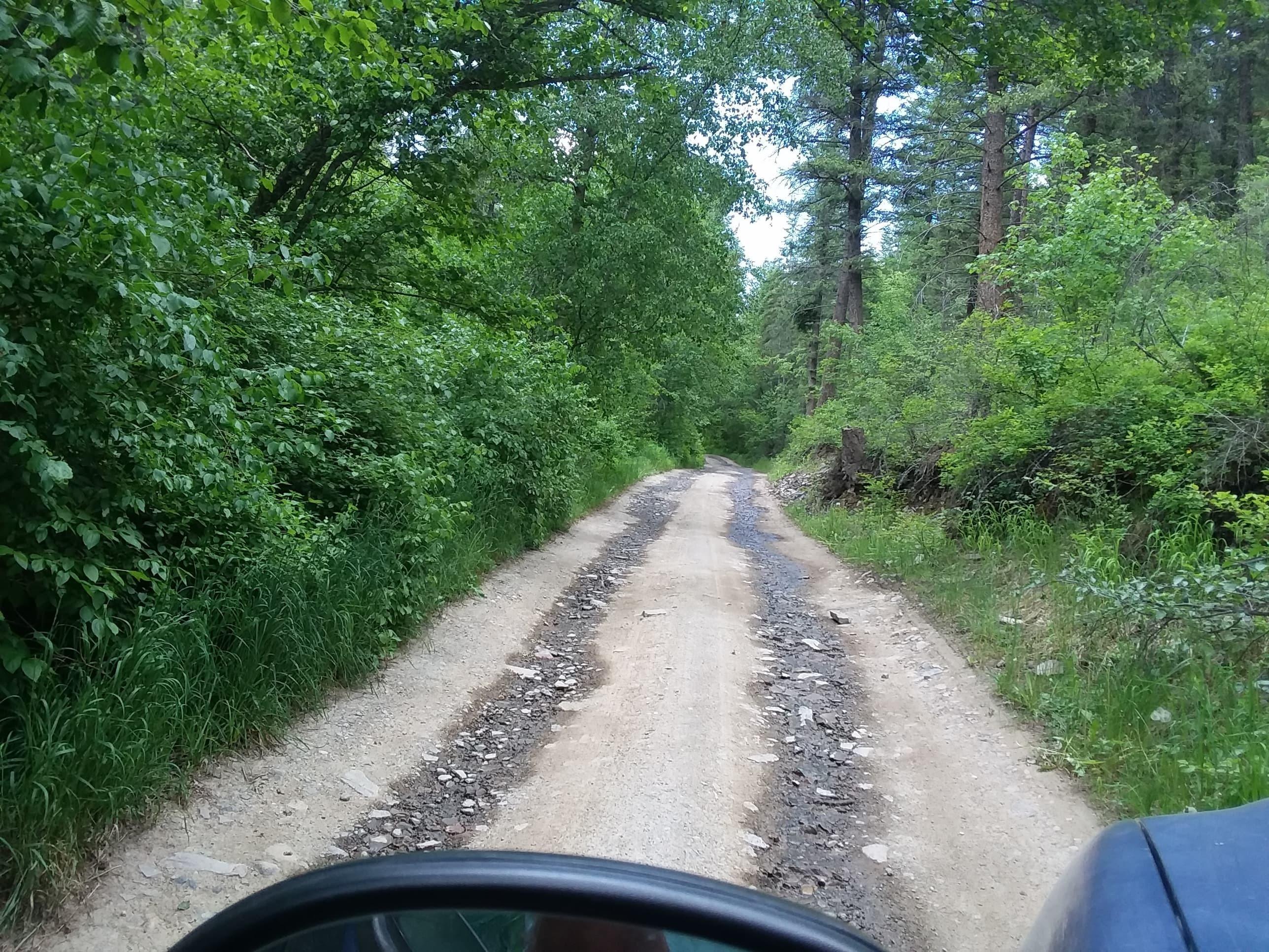 261 Deemer Creek Road, Plains, MT 59859