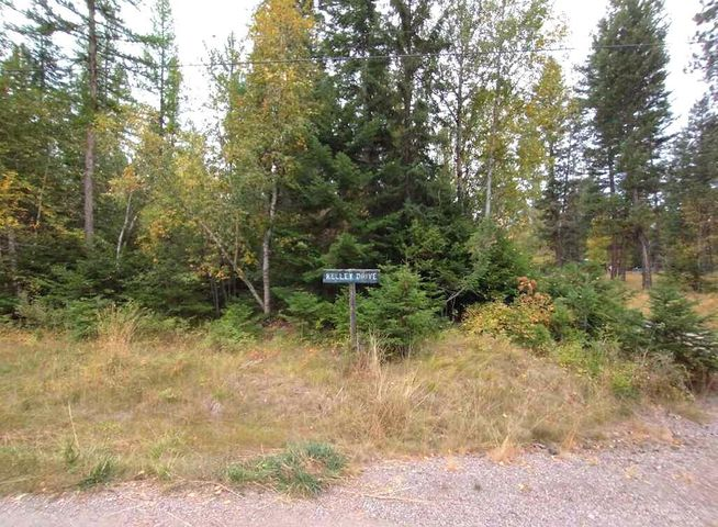Nhn Kelly Drive, Bigfork, MT 59911