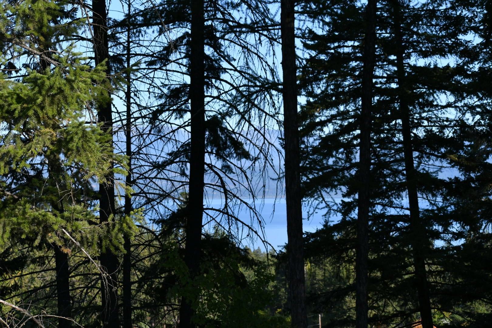 393 Skookum Road, Lakeside, MT 59922