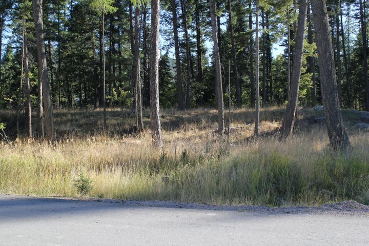 156 Crystal View Court, Lot 37, Lakeside, MT 59922