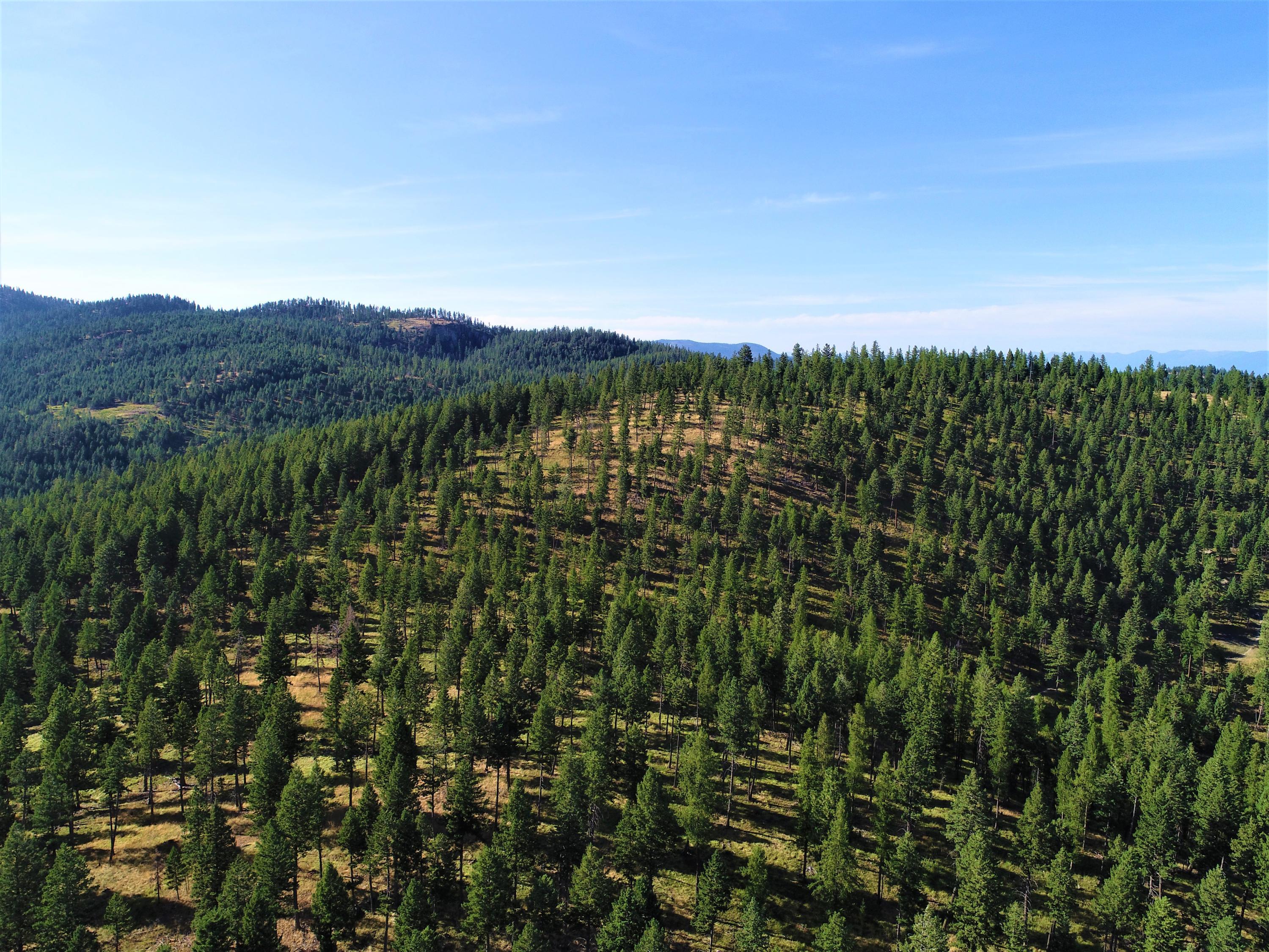 Nhn Spruce Hollow Trail, Kalispell, MT 59901
