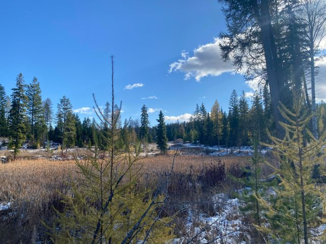 Nhn Patrick Creek Road, Tract 1, Kalispell, MT 59901