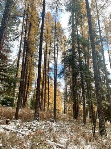 Nhn Coyote Run Lane, Thompson Falls, MT 59873