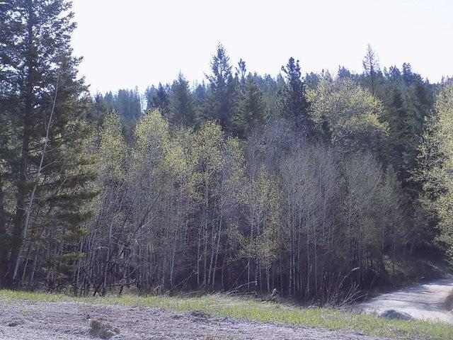3189 Haywire Gulch, Kalispell, MT 59901