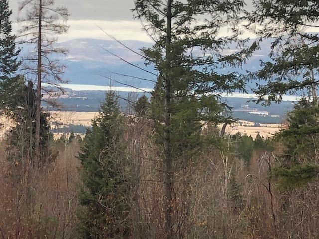 Nhn Caribou Trail, Eureka, MT 59917