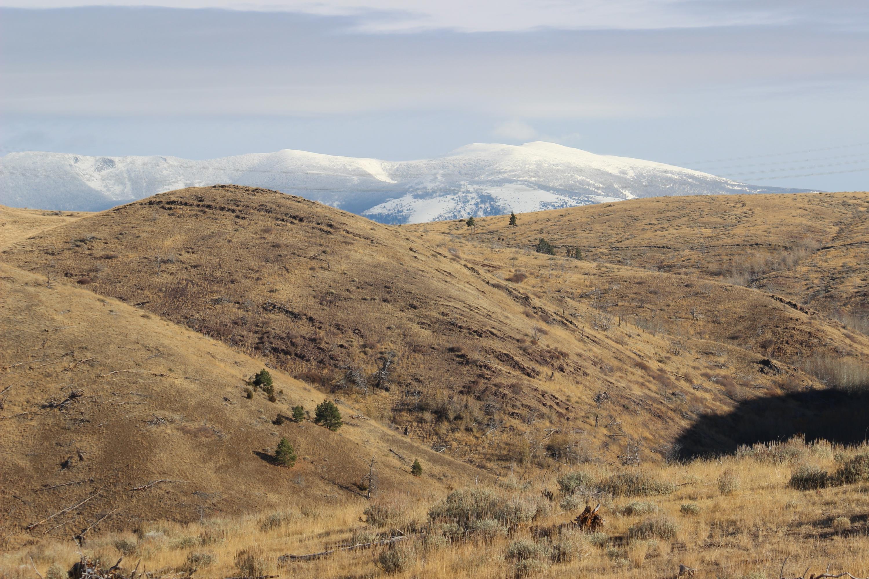 Nhn Dry Creek Road, Townsend, MT 59644