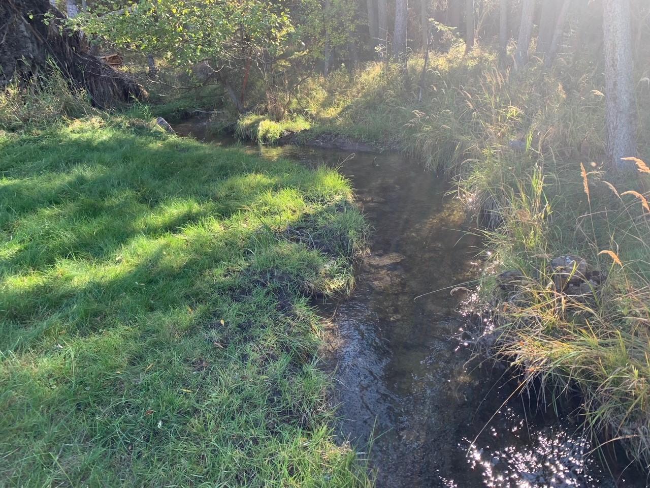 326 Mud Creek Road, Eureka, MT 59917