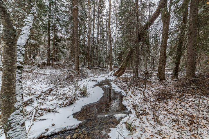 257 Pine Valley Loop, Columbia Falls, MT 59912