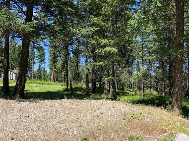 267 Lakeview Drive, Lakeside, MT 59922