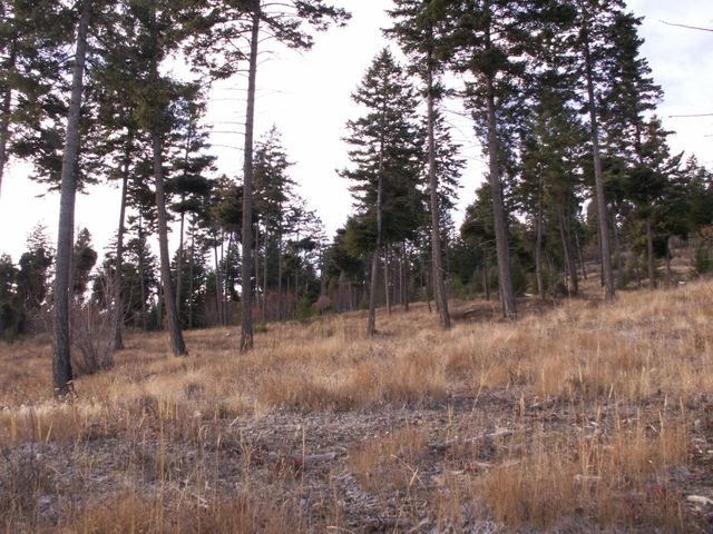 423 Ridge Line Drive, Lakeside, MT 59922