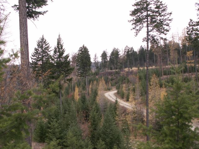 2025 Trappers Creek, Lakeside, MT 59922