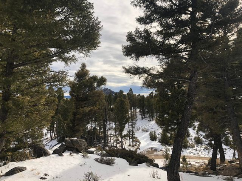 132 Sugar Loaf Trail, Boulder, MT 59632