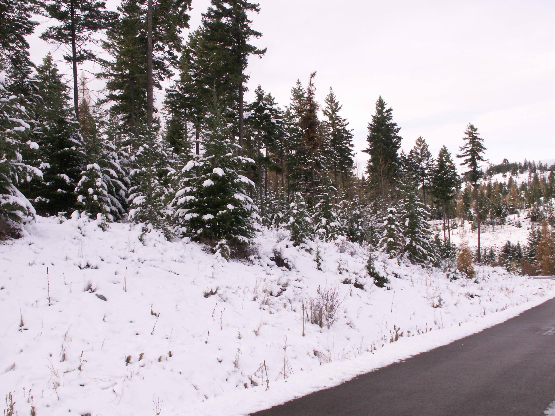 531 Ridge Line Drive, Lakeside, MT 59922