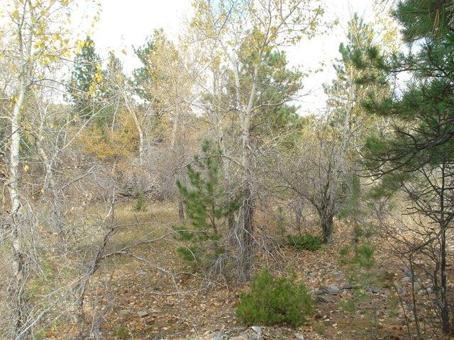 Tbd Cotton Wood, Montana City, MT 59634