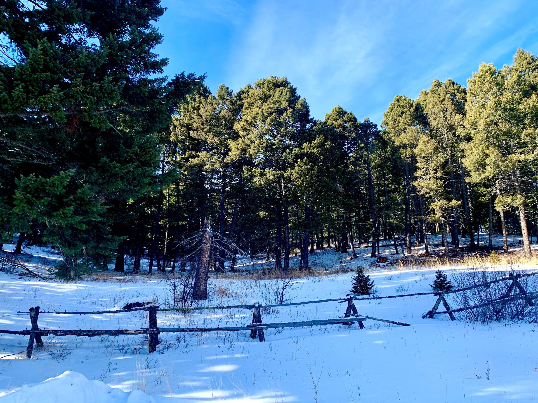 169 Grassy Mountain Road, White Sulphur Springs, MT 59645