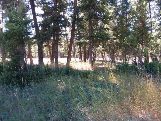 211 Danaher Trail, Seeley Lake, MT 59868