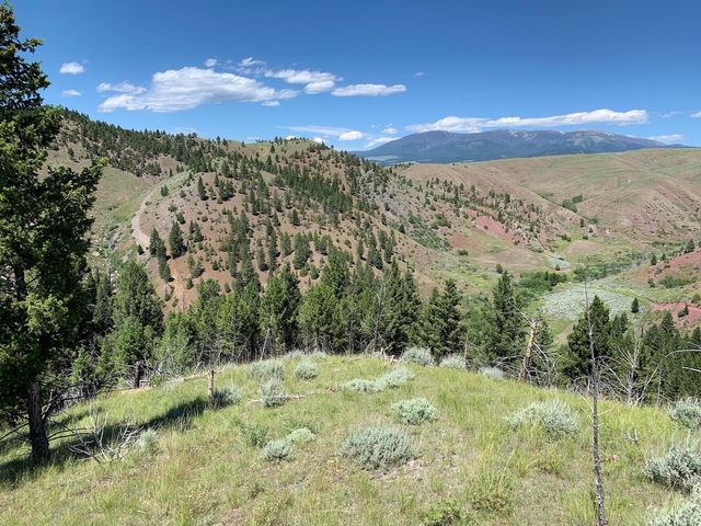 O Ridge Road, Townsend, MT 59644