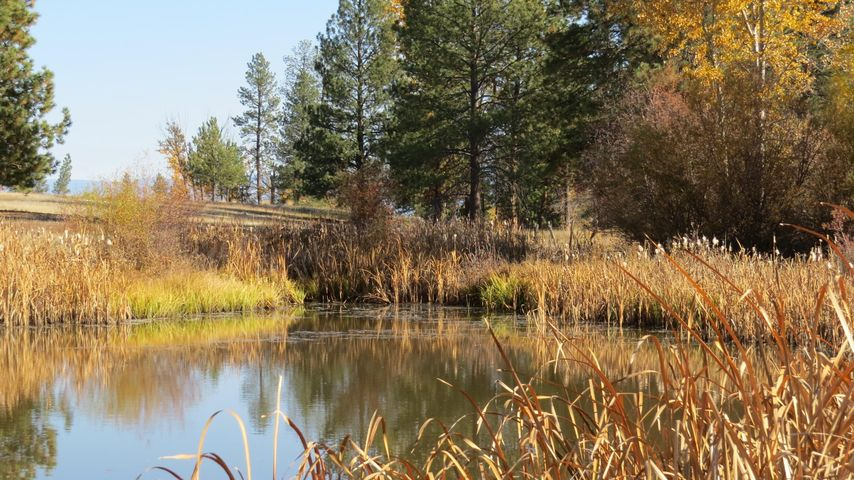 2075 Red Crow Road, Victor, MT 59875