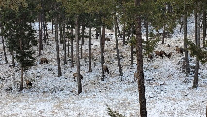 611 Lobo Trail, Hamilton, MT 59840
