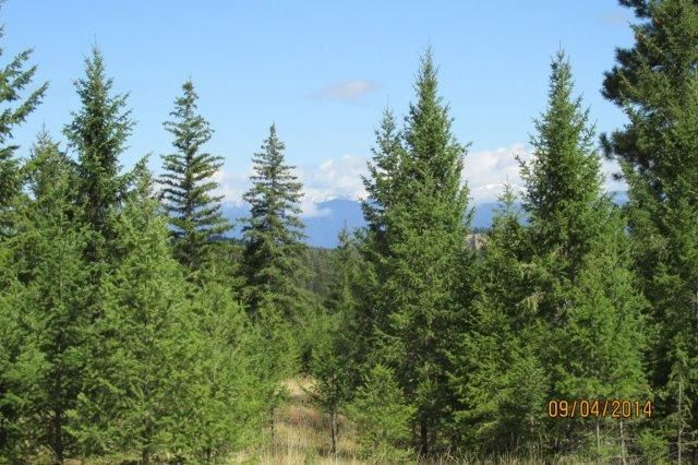194 Annerly Ferry Road, Rexford, MT 59930