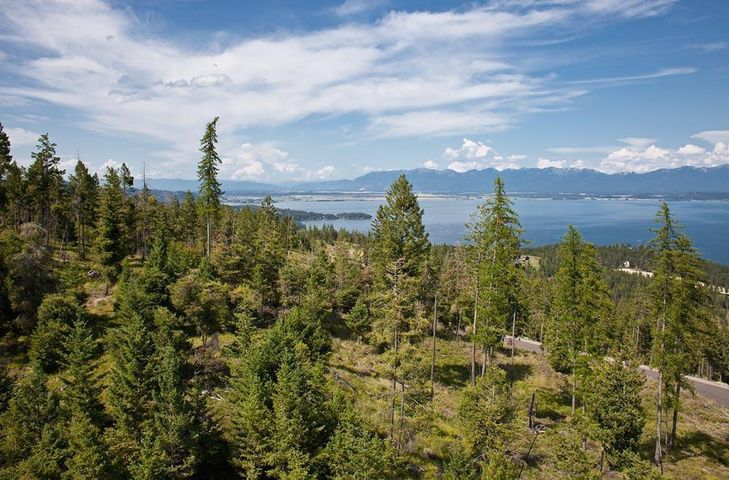 Nhn Trappers Creek Road, Lakeside, MT 59922
