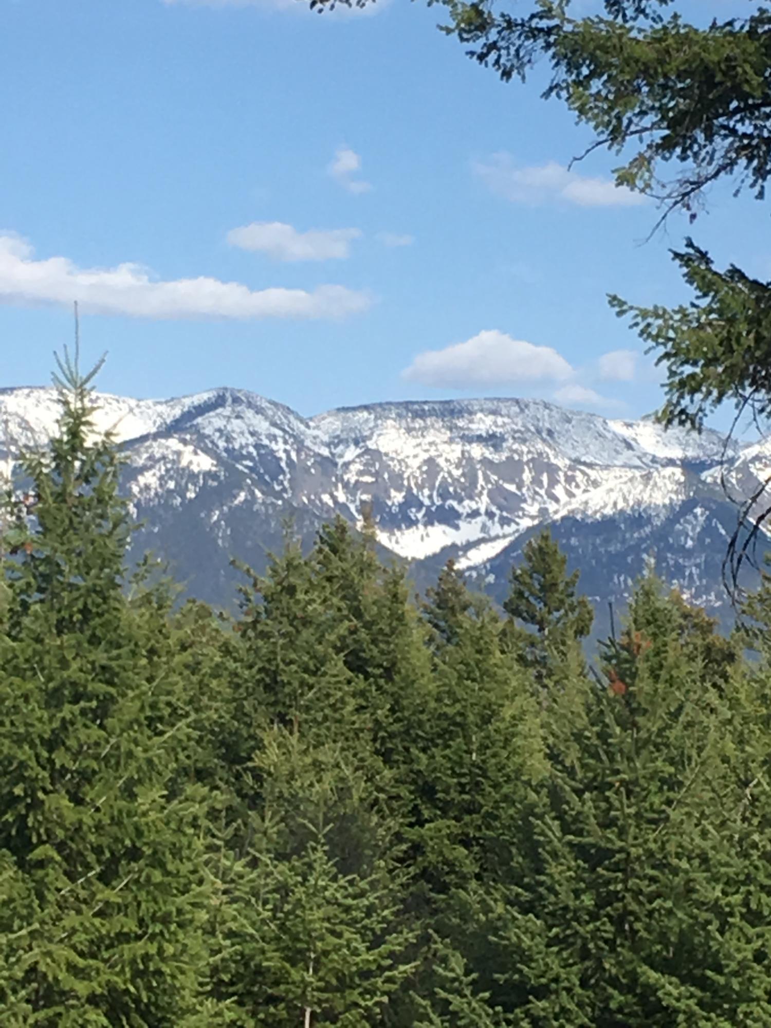 35 Star View Drive, Bigfork, MT 59911