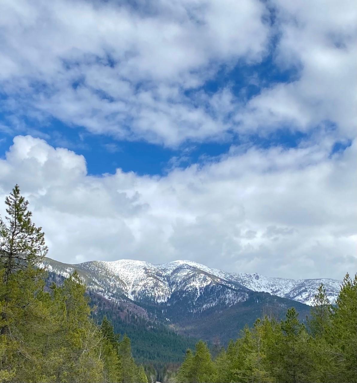 1000 Bear Creek Road, Bigfork, MT 59911