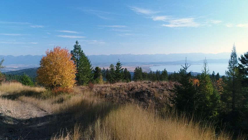 Nhn Patrick Creek Road, Kalispell, MT 59901