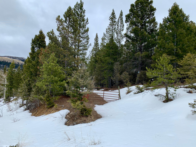 Tbd Spring Emery Road, Deer Lodge, MT 59722