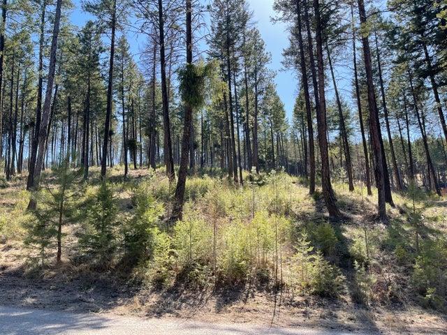 Lot 70 Jette Lake Trail, Polson, MT 59860