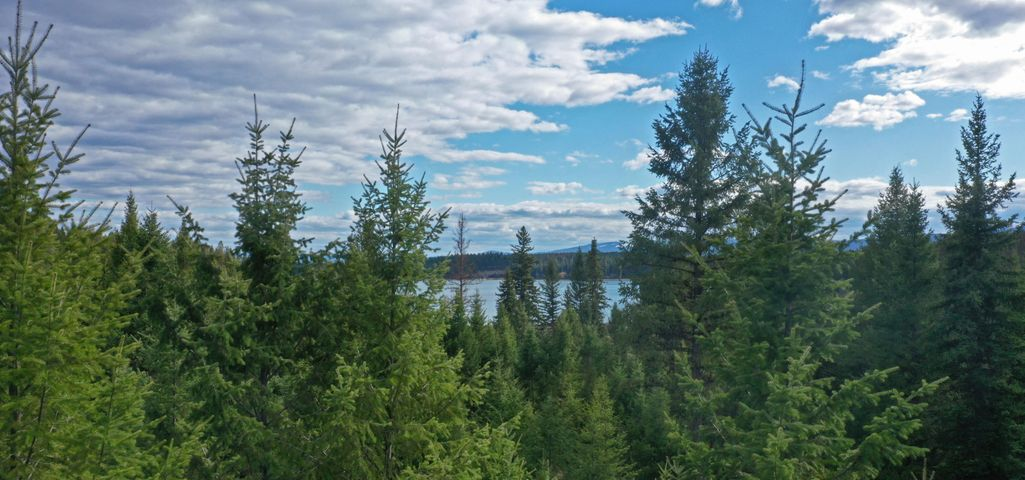 Nhn Sinclair Creek Road, Eureka, MT 59917