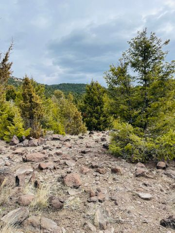 Lot 53 Lookout Trail, Ramsay, MT 59748