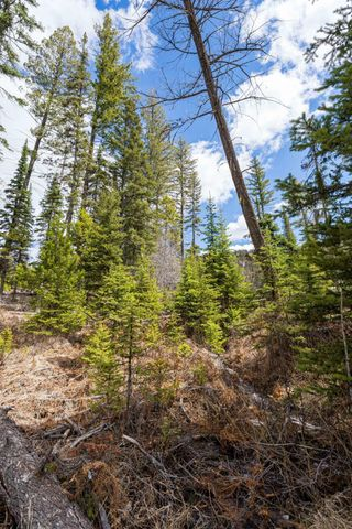 Nhn Griffin Creek Road, Marion, MT 59925