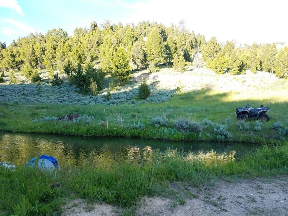 Tbd Big Limber Gulch, Basin, MT 59631
