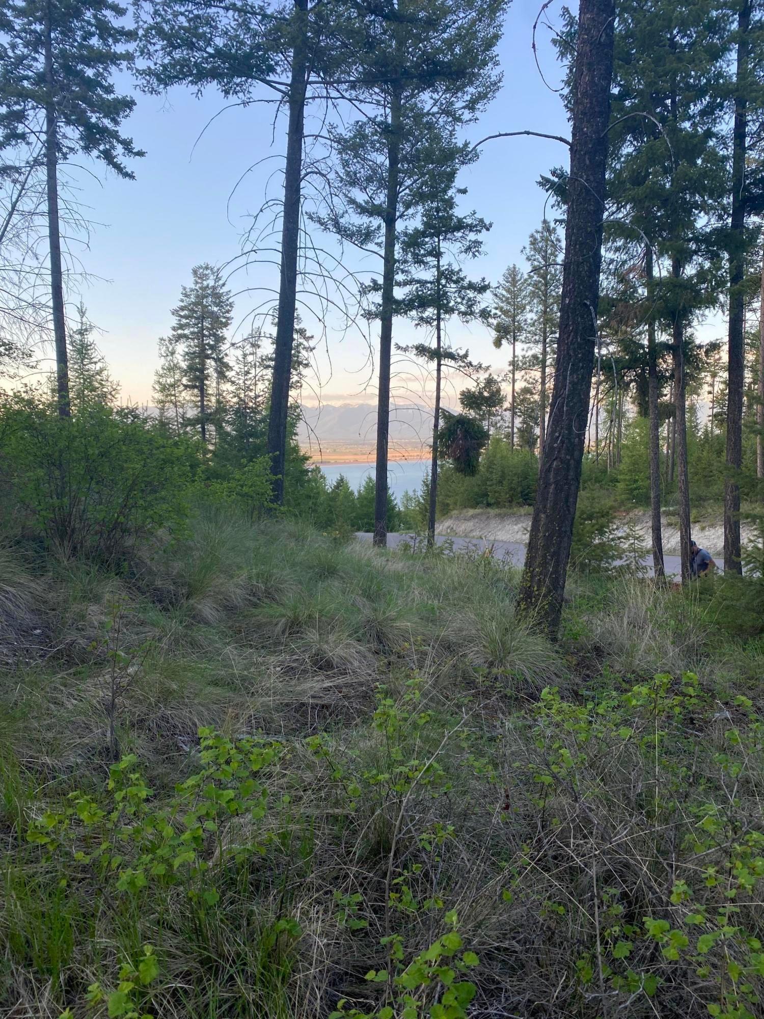 82 Hyden Ridge Road, Lakeside, MT 59922