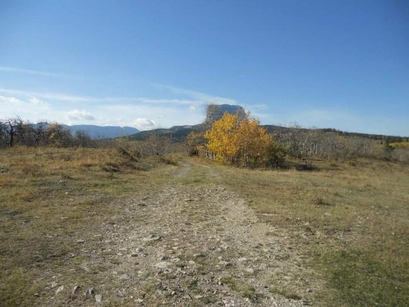Nhn Mt Highway17, Babb, MT 59411