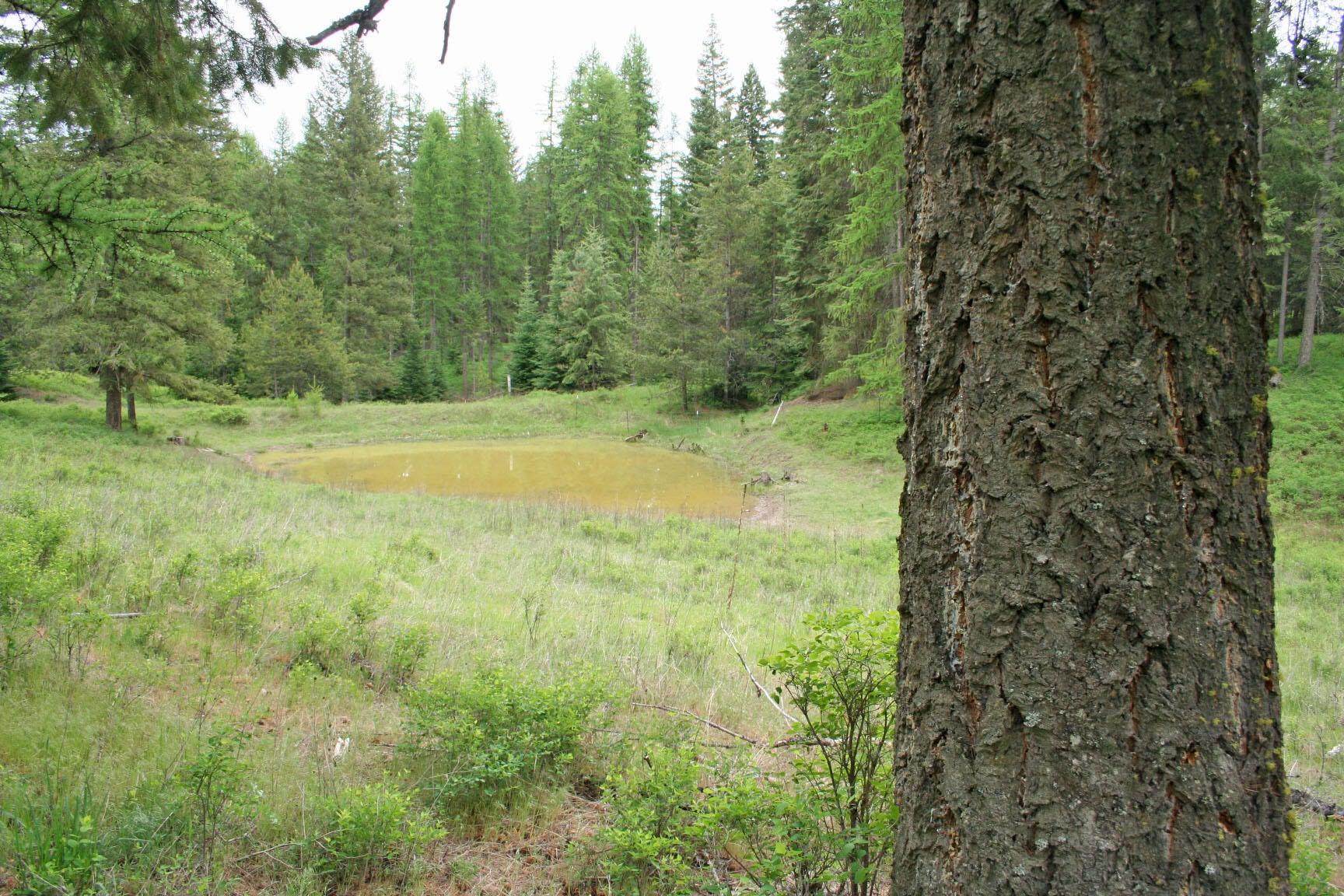 60 Coyote Run Lane, Trout Creek, MT 59874