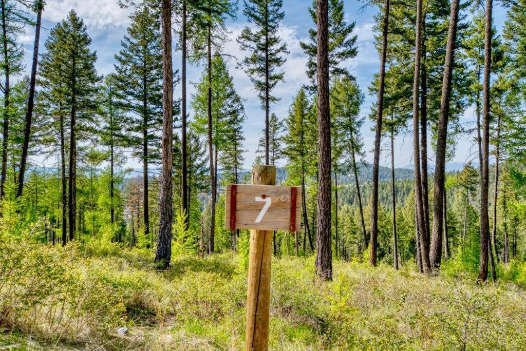 234 Trading Post Trail, Bigfork, MT 59911