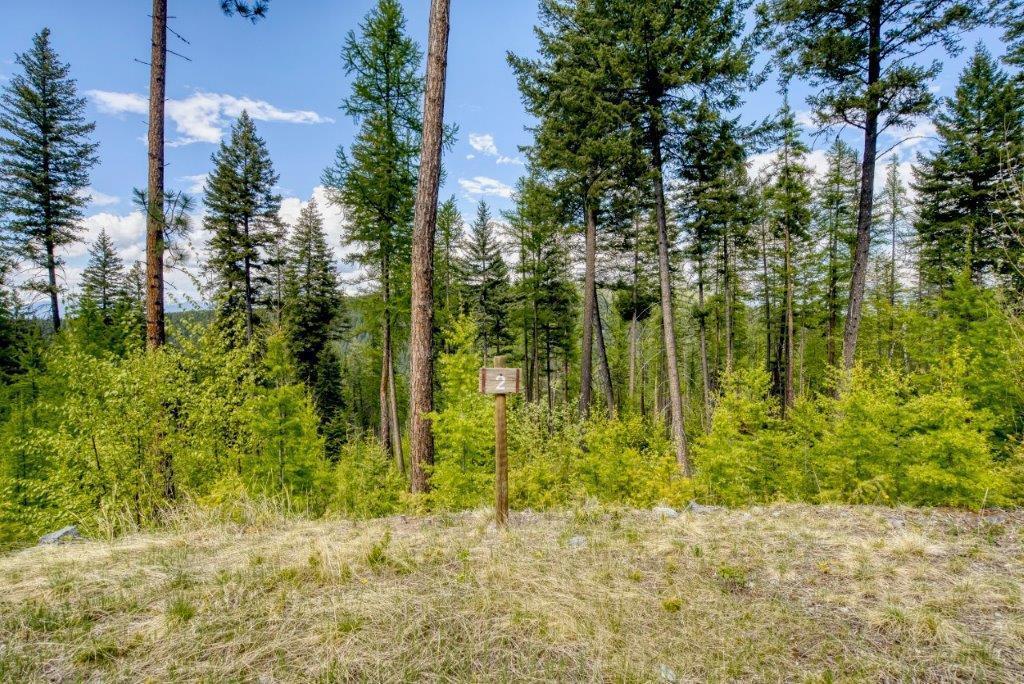 385 Saddlehorn Trail, Bigfork, MT 59911