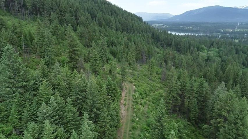 Nhn Forest Lane, Trout Creek, MT 59874