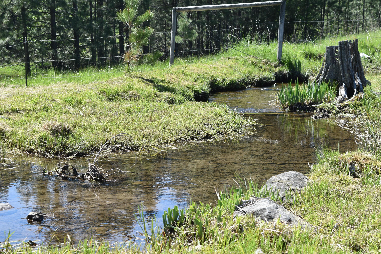 33303 Twin Creeks Way, Ronan, MT 59864
