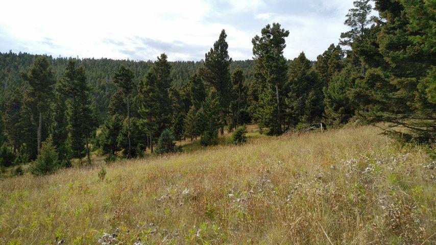 Turk Road, Helena, MT 59602