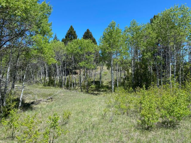 1470 Lime Spur Road, & 44 Two Meadows Dr, Anaconda, MT 59711